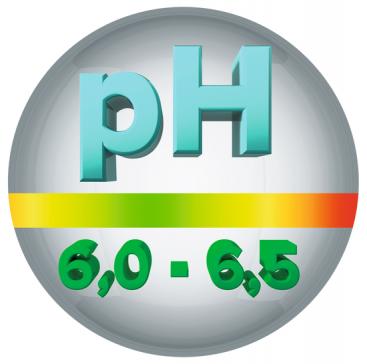 Urinary-pH 6.0-6.5
